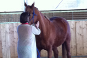 Coachee mit Pferd