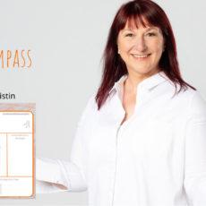 Vorstellung Analyse-Kompass aus dem 3-Phasen-Kompass-Modell